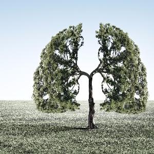 Dexamethason als Asthma-Notfalltherapie