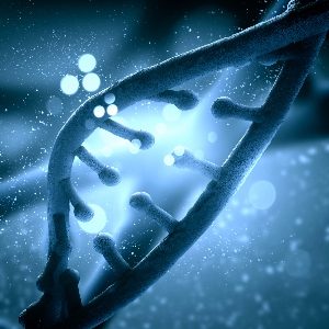 Forscher beschreiben Urform der heutigen Zellen