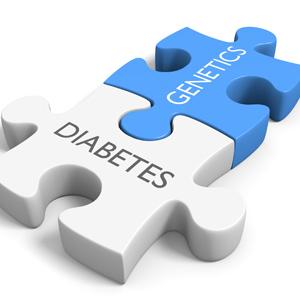 Neu entdecktes Gen mitverantwortlich für Typ-2-Diabetes mellitus